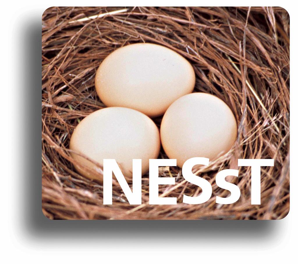 Logo NESsT